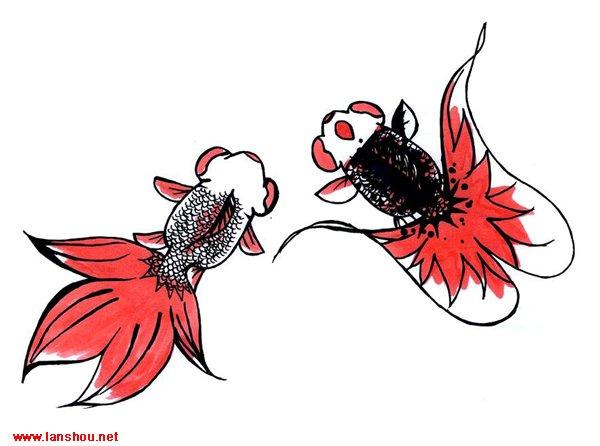 """力吧   就这简单的钢笔画 发上来大家拍砖   家鱼""""花花""""照葫芦画瓢"""